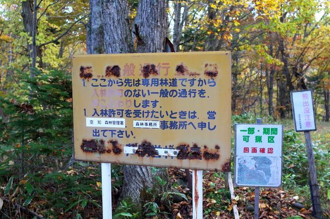 矢野沢林道入り口