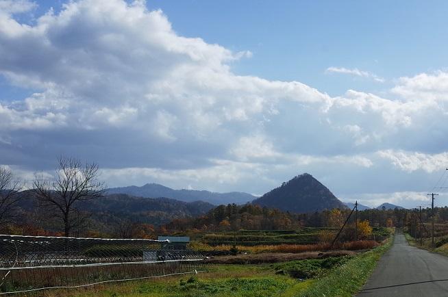 野花南丸山遠景