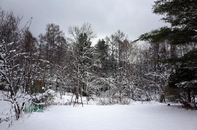 雪の野花南山荘