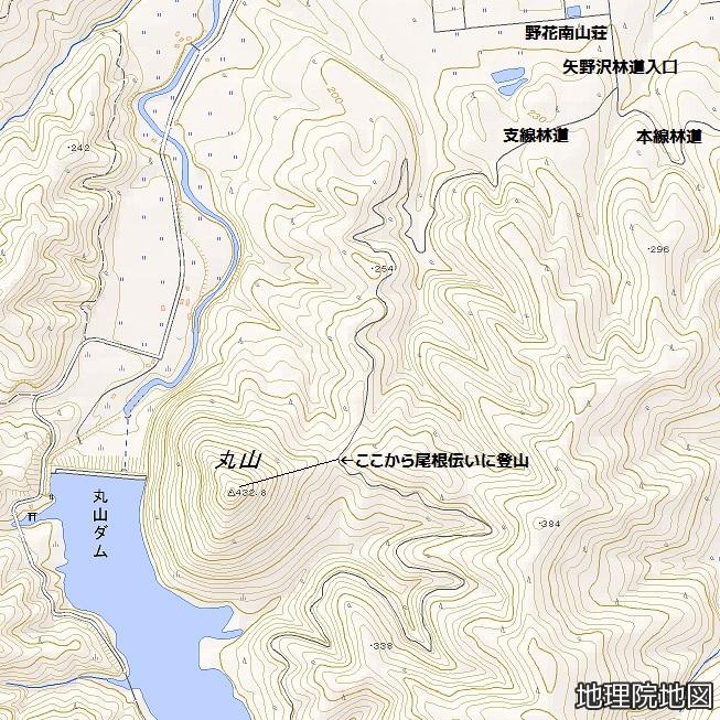 矢野沢支線林道経由丸山山頂